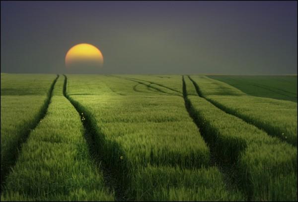 wallpaper pemandangan alam. Puisi Pemandangan Alam