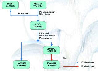 proses produksi jamur