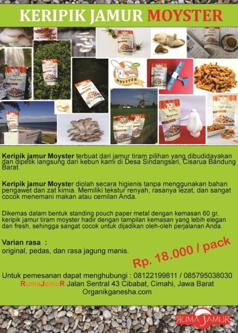 Keripik jamur tiram Moyster kualitas eksport