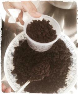 budidaya jamur-menumbuhkan-jamur-pada-media-ampas-kopi-rumajamur-organikganesha-pelatihan-jamur-4