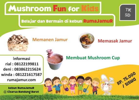 mushroom fun for student.kunjungan anak sekolah.belajar berkebun jamur