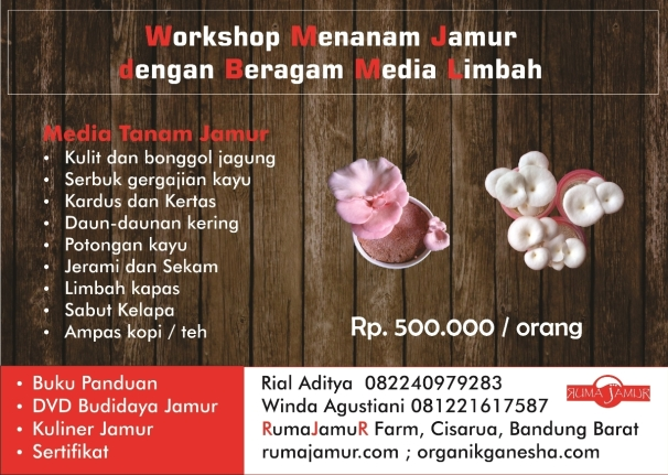 brosur pelatihan budidaya jamur beragam media limbah.urban farming mushroom. training workshop mushroom cultivation