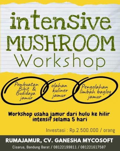 pelatihan jamur intensif. workshop jamur pembuatan bibit jamur budidaya jamur perusahaan jamur bandung indonesia jamur tiram jamur shiitake jamur kancing jamur kuping