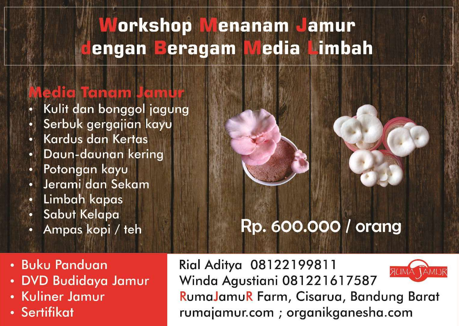brosur workshop usaha jamur. Pelatihan budidaya jamur 1 update.peluang bisnis jamur